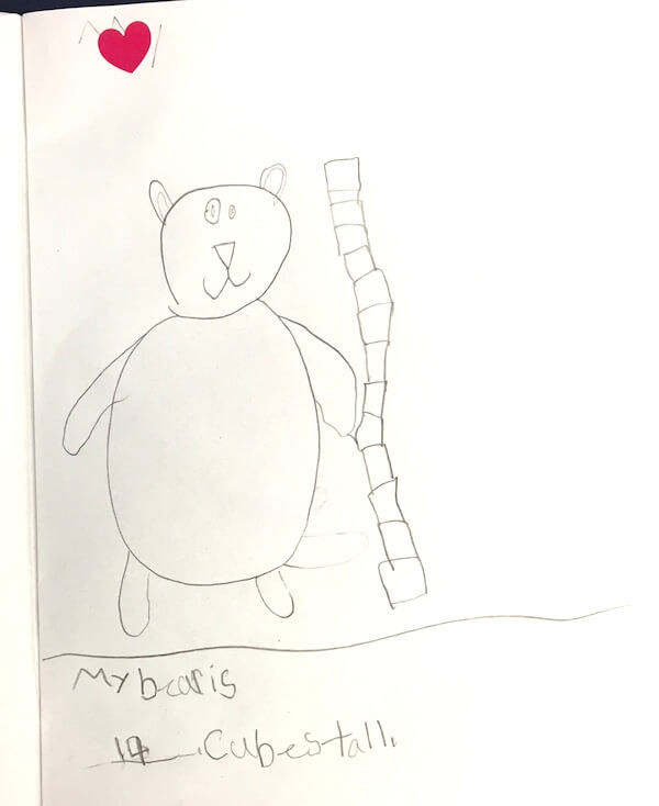 Measuring our teddy bears by 1st Grade students