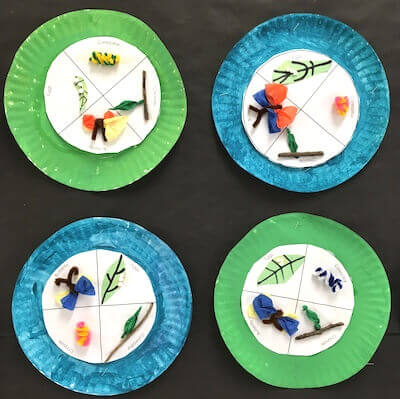 Butterflies in First Grade: Butterfly Life Cycle Paper Plates.  GradeONEderful.com