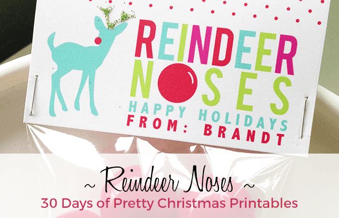 Reindeer Nose Printable