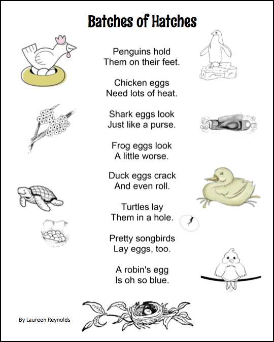 This is a free poem about eggs. Comes with a simple sight word activity using a cracked egg template.