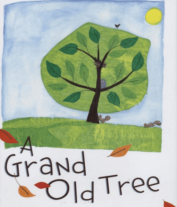 A Grand Old Tree: Book Review. This is a fabulous book that every primary teacher needs.It\'s great for a forest/tree study or as a tie-in to Earth Day. #thegrandoldtree #booksforkids #gradeonederful #trees #earthday