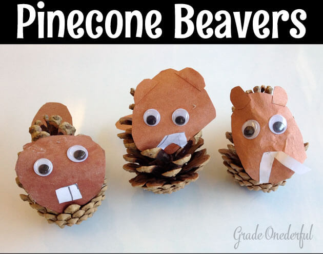 Grade 1s used pinecones to make a beaver as part of our Canadian symbols unit.