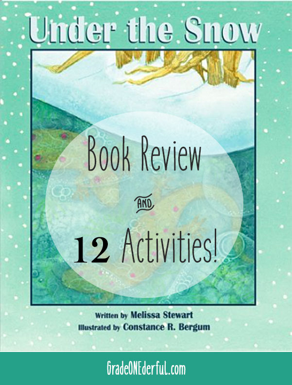 Under the Snow by Melissa Stewart. Book review AND 12 fabulous follow-up activities for first grade!