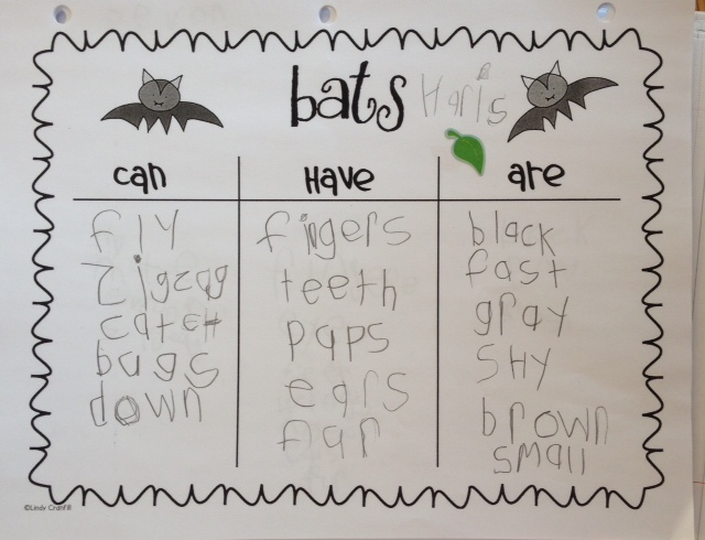 Learning about bats in Grade 1. Lots of pictures, ideas and links to inspire you!