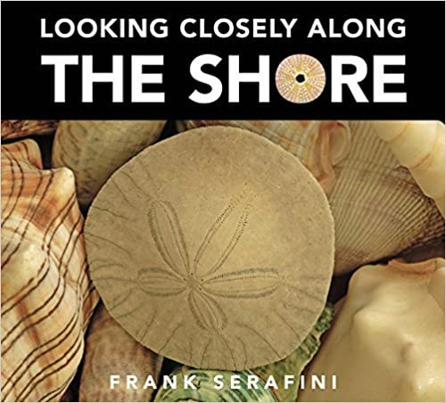 Looking Closely Along the Shore book review and activities