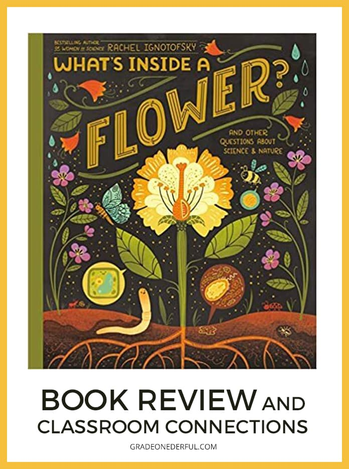 What's Inside a Flower? Book Review